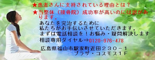 坐骨神経痛の原因と治療 Ι 整体・接骨は口コミNO.1:坐骨神経痛 ...