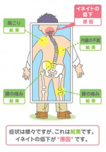 自然治癒力・上部頸椎19