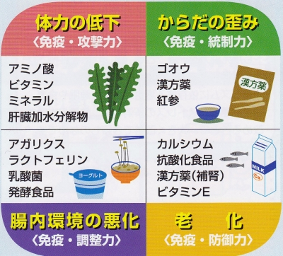 免疫・食べ物2