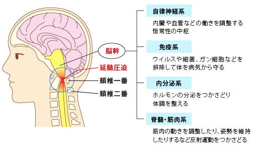 腰痛、頸椎ヘルニア7