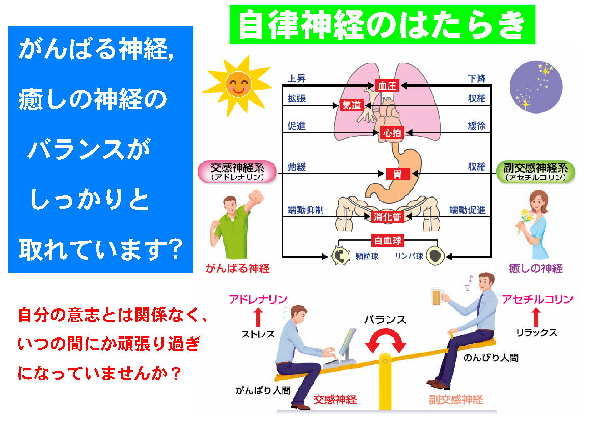 自律神経失調症・働き13
