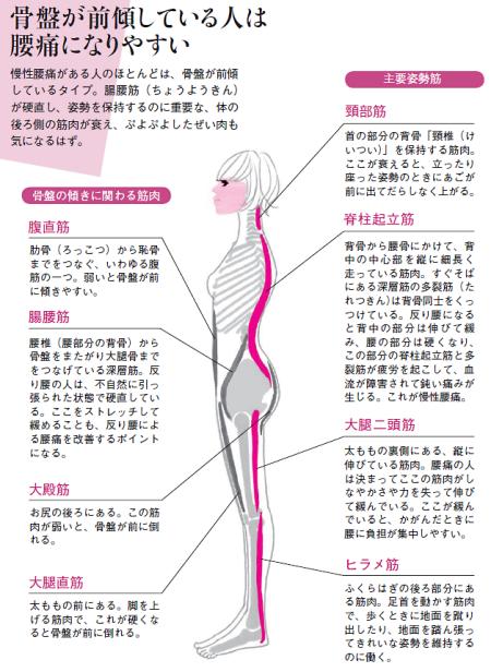 腰痛・慢性化14